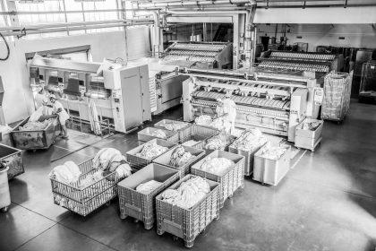 Lavanderia-industriale-Milano-azienda-Borromeo
